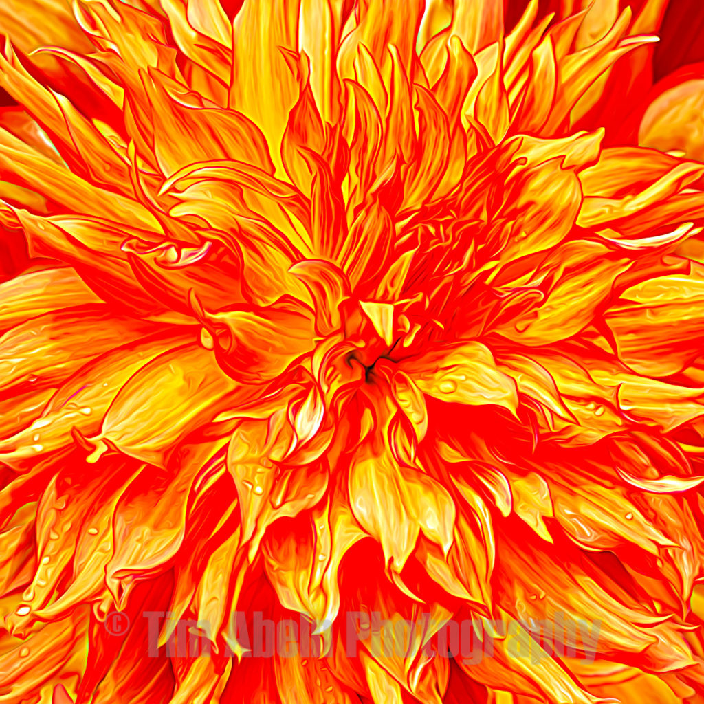 Burning love by Tim Abeln Photography and Digital Art Prints. Beautiful wall decoration for your home and office.