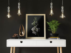 Low Key Flowers by Tim Abeln Photography and Digital Art Prints. Beautiful wall decoration for your home and office.