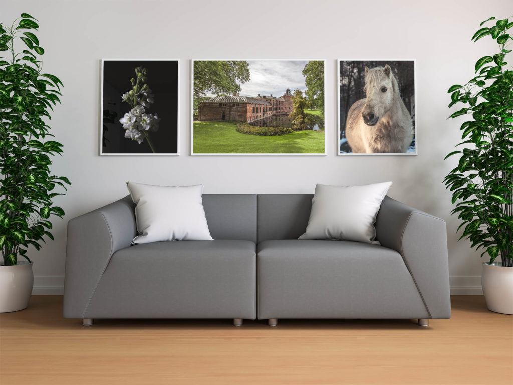 limited time promotion week 38 by Tim Abeln Photography and Digital Art Prints. Beautiful wall decoration for your home and office.